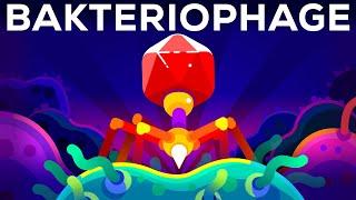 Der tödlichste Killer der Welt – Der Bakteriophage