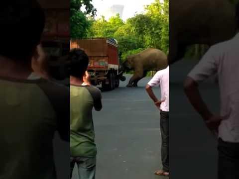Xxx Mp4 Gangajal Ghati Bankura 3gp Sex