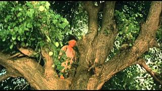 Amintiri din copilarie -trailer