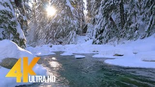2.5 HRS - Winter Waterfall in 4K | Ambient Music & River Sounds - Franklin Falls - Snoqualmie WA