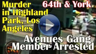 Avenues gang member shoots & kills innocent bystander after driver mad dogs him in Highland Park