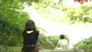 鳳飛颺 珍重再見 MV