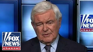 Newt Gingrich on Democrats