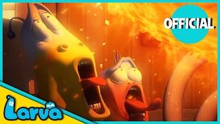 LARVA - FORTUNE COOKIE | 2017 Full Movie Cartoon | Cartoons For Children | LARVA Official