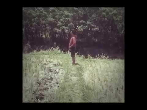 Download Lagu Ary kencana meli disisi cover ady MP3