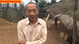 Hmoob Tus Kws Tshuaj Ntsuab Kho Mob Txhua Yam 2016