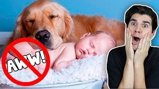 """Try Not To Say """"Aww"""" Challenge! 2 (IMPOSSIBLE)"""