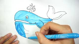 Teach Drawing for Kids | Coloring Dolphin with Color Markers ZoZo TV