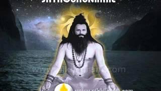 Sadaguru Sadaguru Ratate Ratate Hogayi Me Babariya | Dr Narayan Dutt Srimali Ji