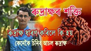 Benefits Of Rudraksha// Dipankar Sarma