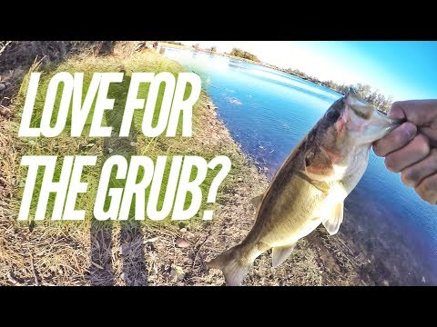 Xxx Mp4 Where S The Love For The Grub Mather Lake Fishing Sacramento CA 3gp Sex