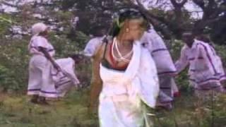 shiida shiillo (kafa music)