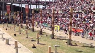 World Tree Felling Championship Final