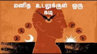 Time and human body - Tamil health tips