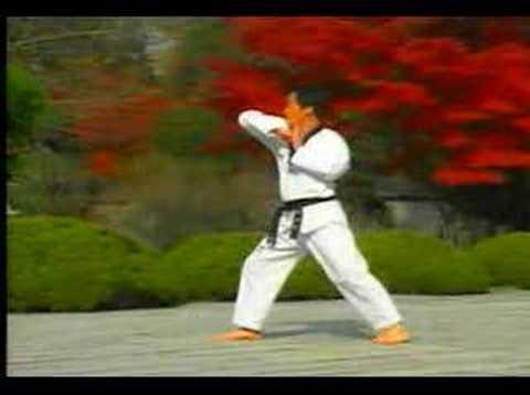 Xxx Mp4 5 Taekwondo Poomsae Taegeuk Oh Jang WTF 3gp Sex