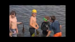 Kilkee Small Bay Swim 2011