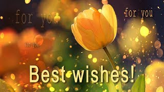 🌺🌺🌺 Best Wishes For You! 2018 🌺🌺🌺 PARALLAX Video Greeting Cards