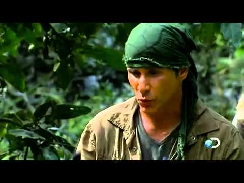 Man, Woman, Wild: Amazon Wildlife