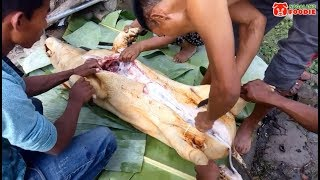 Whole Pig Cooked In Naga Village   Nagaland Foodie