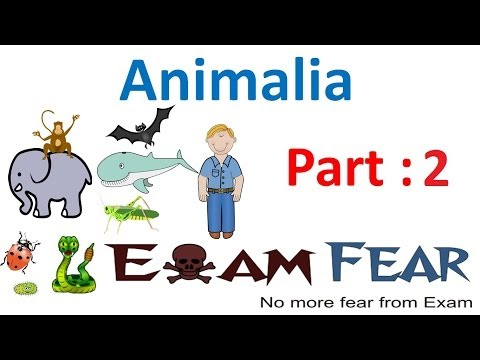 Biology Animalia part 2 (Level of Organisation : Cellular, tissue, Organ) CBSE class 11 XI