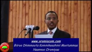 Haasaa Pirezidaantii Mootummaa Naannoo Oromiyaa kab.obbo Lammaa Magarsaa
