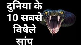 दुनिया के 10 सबसे विषैले सांप Top 10 Most Venomous Snakes in the World In Hindi 2017