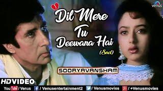 Dil Mere Tu Deewana Hai-Sad | Amitabh Bachchan & Soundarya | Sooryavansham | 90