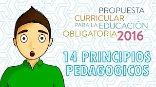 14 PRINCIPIOS PEDAGÓGICOS 2016