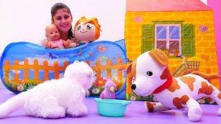 Ayşe, #bebekGül, Loli ve Lili sokak hayvanlar için su bırakıyorlar 🌊. Eğitici #çocukoyunları
