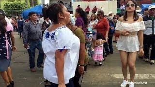 Zapateando El Querreque Desde Xilitla SLP (Domingos De Huapangos)