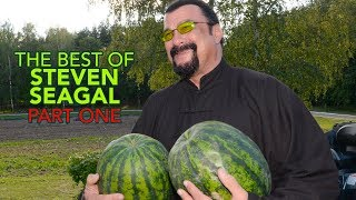 The Best Of STEVEN SEAGAL (PART ONE)