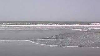 Kololi beach The Gambia
