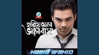 Hariye Fela Bhalobasha