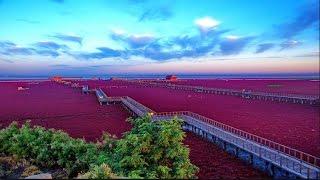 পৃথিবীর অসাধারন সাতটি স্থান যেখানে না গেলেই নয়  !!!! Fantastic 7 Tourist places in the world
