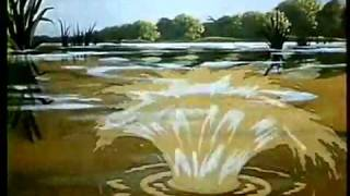 Disney's Song of The South (1986) Theatrical Trailer