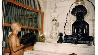 Shree 1008 parasnath bhagwan.wmv