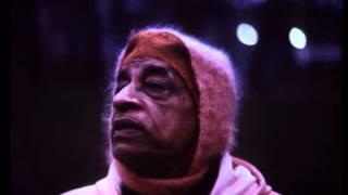 Radharani is Krishna's Pleasure Potency - Prabhupada 0528