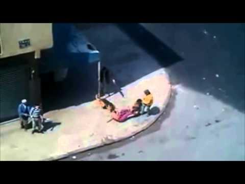 Pastor Aleman agredido se defiende ATAQUE PASTOR ALEMAN 2013