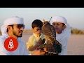 Download Video Generations of Flying Falcons in Dubai's Desert 3GP MP4 FLV