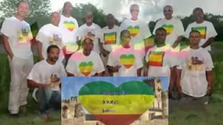 Download New Ethiopian Song Shambel Belayneh   2016 3Gp Mp4