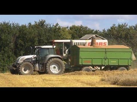 Doku Ackern im Akkord Getreideernte auf dem Wulfhof Ausstrahlung vom Oktober 2012