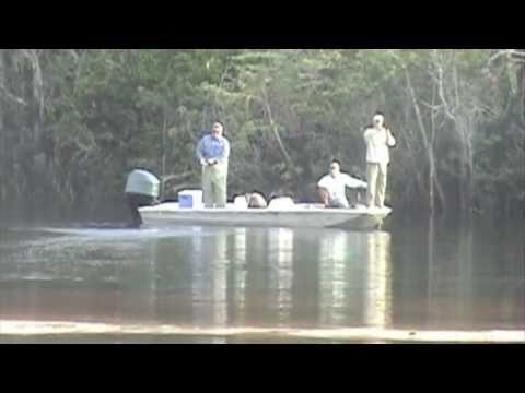 Pescaria Zorzi Amazônia Barco Hotel Tayaçu parte 1