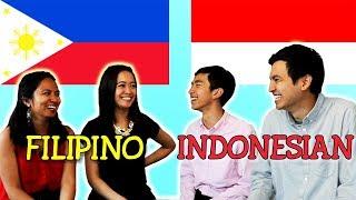 Language Challenge: Filipino vs Indonesian