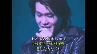 X JAPAN - Endless rain(Live 한글자막)
