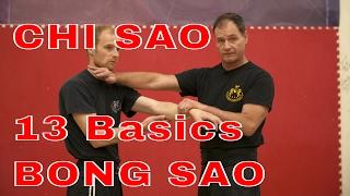 Chi Sao: 13 Basics Pt 1 and 2 w Bong Sao