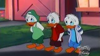 Quack Pack   S01 E20   Duck Quake