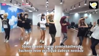 Lion Heart (SNSD)~Dance Practice + Lyric