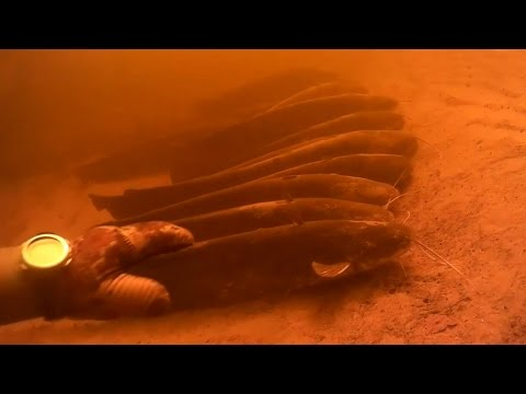 сонник ловить рыбу руками на мели