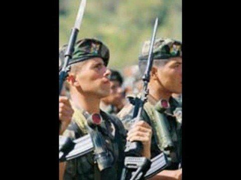 fuerzas especiales de bolivia condor satinador