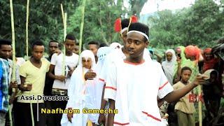 Tofik Mahamed:  Oromo/Oromiyaa Music  2017  Bakakkaa Entertainment Official Video)